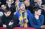 AFC Wimbledon fans look on during the 1st half. Skybet football league two play off semi final, 1st leg match, AFC Wimbledon v Accrington Stanley at the Cherry Red Records Stadium in Kingston upon Thames, Surrey on Saturday 14th May 2016.<br /> pic by John Patrick Fletcher, Andrew Orchard sports photography.