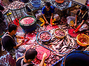 08 JUNE 2017 - BANGKOK, THAILAND:  Workers kill and butcher catfish in Khlong Toey Market, Bangkok's main fresh market. Thai consumer confidence dropped for the first time in six months in May following a pair of bombings in Bangkok, low commodity prices paid to farmers and a sharp rise in the value of the Thai Baht versus the US Dollar and the EU Euro. The Baht is surging because of political uncertainty, related to Donald Trump, in the US and Europe. The Baht's rise is being blamed for a drop in Thai exports. This week the Baht has been trading at around 33.90 Baht to $1US, it's highest point in two years.     PHOTO BY JACK KURTZ