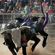 Arnold Guzman, 14, tries to hold on to a bull for a couple more seconds during an open rodeo at the Sheriff's Posse Arena in Edinburg.  <br /> Nathan Lambrecht/The Monitor