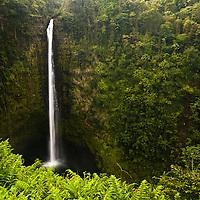 Akaka Falls north of Hilo, Hawaii.