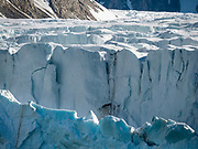 The Arctic Ocean has several iceberg contributors: the ice of the Canadian Arctic, the Norwegian Svalbard archipelago, and the Russian Arctic.