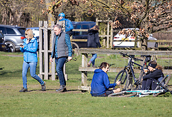 © Licensed to London News Pictures. 19/03/2021. London, UK. Members of the public enjoy a picnic in the sunshine in Richmond Park, South West London today as the UK welcomes the first day of Astronomical Spring tomorrow with weather forecasters predicting cold mornings but with a mild 12c for the week ahead. Photo credit: Alex Lentati/LNP