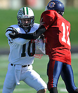 Elyria Catholic at Cleveland Central Catholic in a varsity football game on October 16, 2010 in Cleveland.  © David Richard