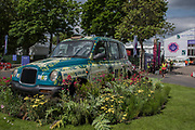 A floral M&G Taxi decorates a roundabout outside the gates on the embankment - Final preparations for the Chelsea Flower Show organised by the Royal Horticultural Society with M&G as its amin sponsor for teh final year.