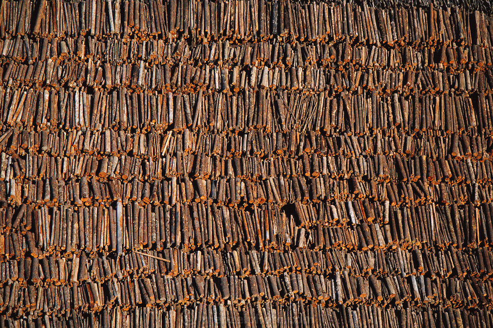 Redwood logs.  Blue Lake Timber Company, Humboldt County, California, USA.
