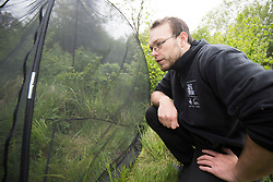 Back from the Brink Communications Manager James Harding-Morris looking at release net for reintroduced chequered skipper butterfly, Northamptonshire, May