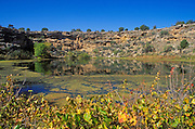 Morning light on Montezuma Well and ruins (Sinagua Indians), Montezuma Castle National Monument, Arizona