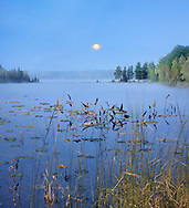 A Slightly Foggy Moonrise Over Lily Pads And Distant Tree Line On A Quiet Michigan Lake At Dusk, USA