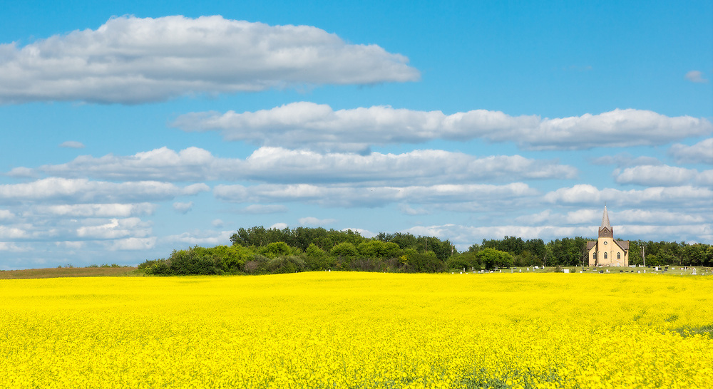 Southwest of the village of Stockholm, Saskatchewan, this historic brick-clad Gothic Revival church stands prominently among fields of blossoming canola.
