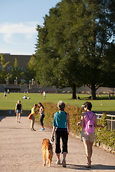 North America, United States, Washington, Bellevue, Bellevue Downtown Park,