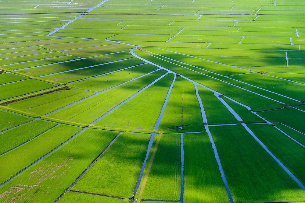 Nederland, Noord-Holland, Gemeente Ouder-Amstel, 09-04-2014; Amstelland, Polder de Rondehoep (ook Polder de Ronde Hoep), een van de grootste onbebouwde weidegebieden van de Randstad met karakteristiek stervormig kavelpatroon. Dit slotenpatroon van gerende verkaveling is ontstaan ten tijde van de ontginning in de middeleeuwen. <br /> The Polder Rondehoep (or Polder Round Hoep), one of the largest undeveloped pasture area's in the Randstad with characteristic star-shaped pattern. This pattern is the result of the extraction during the Middle Ages.<br /> luchtfoto (toeslag op standard tarieven);<br /> aerial photo (additional fee required);<br /> copyright foto/photo Siebe Swart