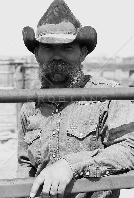 cowboy with a handlebar moustache