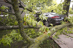 July 23, 2017 - Prairie Village, KS, USA - After heavy storms with strong winds moved through the metro area Saturday night, the storm damage was apparent Sunday, July 23, 2017 in Prairie Village, Kan., where a nearly new car was smashed at 67th Street and Roe Avenue. (Credit Image: © Tammy Ljungblad/TNS via ZUMA Wire)