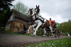 © London News Pictures. 08/05/2012. Windsor, UK.  Horses and carriage being exercised on the riverbank of the Thames River at Windsor on day one of the Royal Windsor Horse Show, set in the grounds of Windsor Castle. Established in 1943, this year will see the Show celebrate its 70th anniversary. Photo credit: Ben Cawthra/LNP