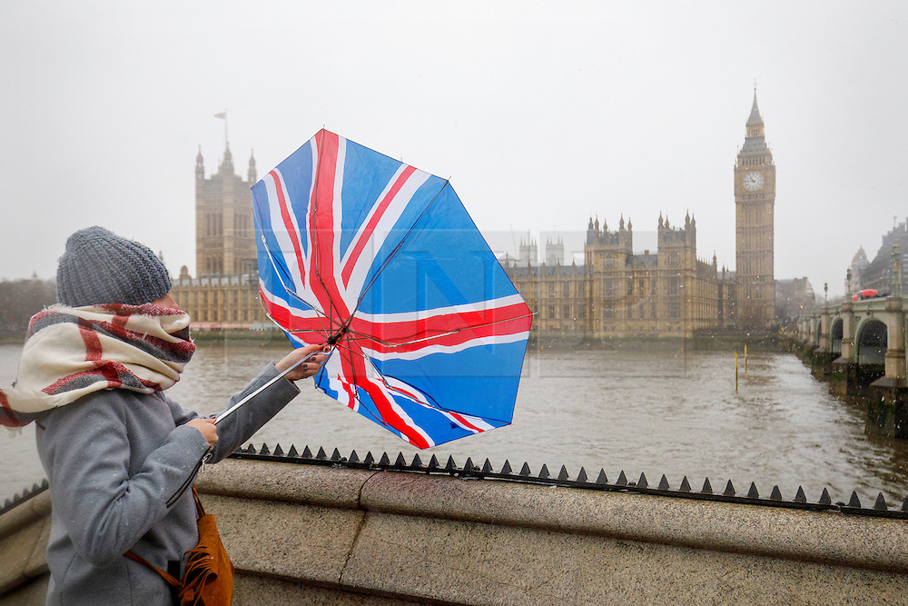 © Licensed to London News Pictures. 13/01/2017. London, UK. A woman struggles to control her umbrella near Westminster Bridge whilst snowing in London on Friday, 13 January 2017. Photo credit: Tolga Akmen/LNP