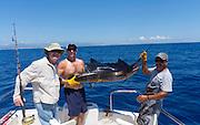 Sailfish, Fishing, Cabos San Lucas, Baja, Mexico