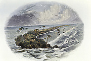 Coral Reef: hand coloured engraving published 1849. Time taken for building of coral reefs and islands was a proof used by Charles Darwin to support the theory of a long geological timescale.