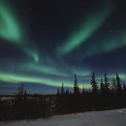 Aurora borealis, also known as northern lights, near Churchill, Manitoba, Canada.