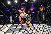 MMA: German MMA Championship, GMC, Hamburg, 07.01.207<br /> Anatolij Baal (Team Seiwasser) - Alexander Vogt (Team Ardalan)<br /> © Torsten Helmke