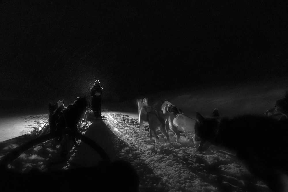 For people living in Svalbard dog sledding is a way of traveling, a pastime and even a lifestyle. As of 2013, there were more than 600 dogs registered in Svalbard; and the number is rising as more and more companies introducing dog activities for tourists.