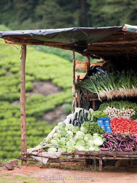 Vegetable stall in the hills near Niwara Eliya