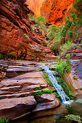 Small waterfall on a patio above the Elves Chasm waterfall in the Grand Canyon National Park