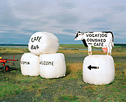 Signs for the cowshed cafe, Lake Myvatn, Iceland