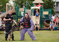 """Laconia Police Officer Mike Armstrong, """"Titan"""" and Officer Tyler Babineau perform a K9 demonstration at Laconia's National Night Out at Blueberry Lane Apartments Tuesday evening.  (Karen Bobotas/for the Laconia Daily Sun)"""