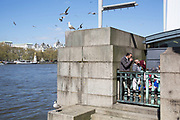 Asian family eating their lunch tucked away on a corner by the River Thames, as seagulls circle overhead. The South Bank is a significant arts and entertainment district, and home to an endless list of activities for Londoners, visitors and tourists alike.