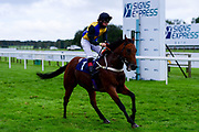 No More Promises ridden by Tim Clark and trained by Frank Bishop ridden in the Final Furlong Podcast Novice Stakes - Mandatory by-line: Ryan Hiscott/JMP - 24/08/20 - HORSE RACING - Bath Racecourse - Bath, England - Bath Races