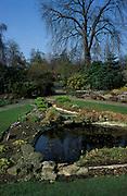 Garden & Pond in Summer, UK, sunny, sequence, seasons