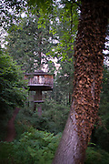 """""""Cabanes als arbres"""" offers a unique tree-house experience to all nature lovers and adventure junkies. It was a real pleasure to stay in such direct contact with the trees and the surrounding enchanting ecosystem - The pleasures of an exile among the foliage, as we spent the night  in a sustainably designed nest placed delicately in the framework of the branches of a beautiful tree - In our case 'Cabana Pit Roig""""<br /> <br /> Submerged in an ocean of branches in the northeast of Catalonia, in the county of La Selva, ten comfortable tree houses perfectly camouflaged within the surrounding foliage, each named after oneof the forrest's native birds. <br />  <br /> One of the great attractions of staying in a tree house in this enchanting corner of Catalonia, is the feeling of freedom and privacy it offers. Everywhere you look, you feel surrounded by the ease of the chirping of birds, and the murmur of the hidden secrets of the forest.. A truth somewhat misleading, since within a few meters emerges another of these wooden wonders or the country house The Vileta.<br />  <br /> The Vileta is a typical Catalan country house equipped with parking, reception, canteen, living room, showers, swimming pool and garden."""