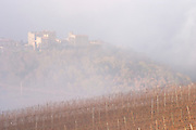 View over Roquetaillade village in morning mist clouds. Domaine Jean Louis Denois. Limoux. Languedoc. An early winter morning with mist still laying low and sunshine glowing golden. France. Europe. Vineyard.