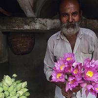 Sri Lanka, Man sells tropical flowers outside Buddhist Temple near Colombo