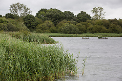 A view across the lake from one of the bird hides at Calvert Jubilee Nature Reserve on 27 July 2020 in Calvert, United Kingdom. On 22nd July, the Berks, Bucks and Oxon Wildlife Trust (BBOWT) reported that it had been informed of HS2's intention to take possession of part of Calvert Jubilee nature reserve, which is home to bittern, breeding tern and some of the UK's rarest butterflies, on 28th July to undertake unspecified clearance works in connection with the high-speed rail link.