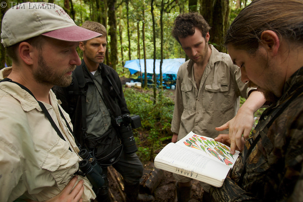 Foja Mountains RAP Expedition members confer on bird sightings at Bog Camp.<br />L to R:  Chris Milensky, Nev Kemp, Paul Oliver, Edwin Scholes.