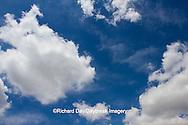 63891-02507 Cumulus clouds in blue sky, Marion Co., IL
