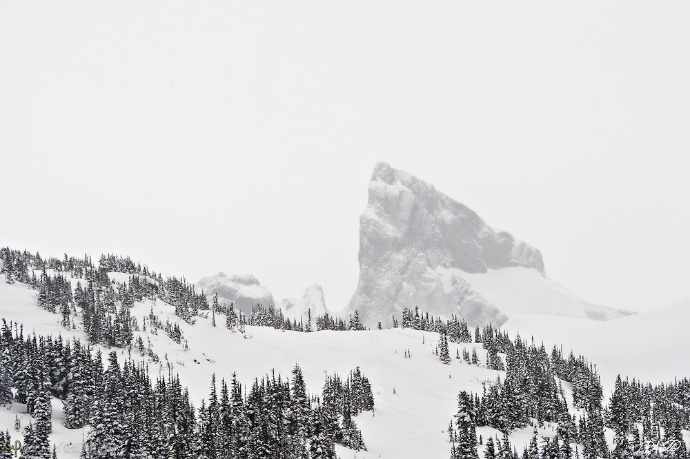 The Black Tusk, a remnant of an extinct volcano that has mostly eroded away, rises 7,608 feet above sea level near Whistler, British Columbia as photographed here by helicopter during a February snowstorm.