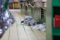 © Licensed to London News Pictures. 13/10/2019. London, UK. Victim's clothings inside West Green Halal Meat and Groceries store on West Green Road in Tottenham, North London where two men were stabbed and rushed to hospital shortly after 9.30am this morning. The ages of the two victim and their condition is not yet know. Photo credit: Dinendra Haria/LNP