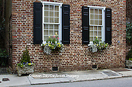 66512-00201 Window boxes with pansies and snapdragons on old brick building, Charleston, SC