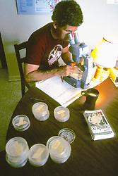 Michael Erwin Looking At Samples Microscope