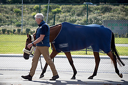 Dutch Team<br /> Departure of the horses to the Rio Olympics from Liege Airport - Liege 2016<br /> © Hippo Foto - Dirk Caremans<br /> 30/07/16
