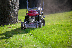 Mowing a lawn for the first time in spring with the blades set high