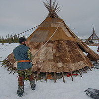 North of the Arctic Circle in Russia, Alexei Vauchesky, Nikolai Khantazeiski and Marie Vaucheskaya, members of the last nomadic Komi reindeer herding clan, wrap their chum (tepee) first with a carefully-sewn patchwork of reindeer skins, then with a canvas covering.
