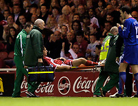 Photo: Jed Wee.<br />Middlesbrough v Manchester Utd. The Barclays Premiership. 29/10/2005.<br /><br />An excellent day at the office for Middlesbrough is slightly marred by the injury to Brazilian playmaker Fabio Rochemback.