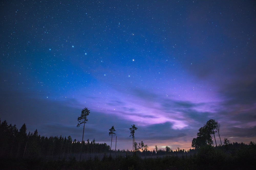 Star constellation of Big Dipper in night sky, lite afterglow and forest clearing in front, Northern Vidzeme, Latvia Ⓒ Davis Ulands | davisulands.com