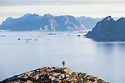 Parmenter Welty looks out towards Mosken (right) and Moskenesoya Islands from Vaeroy Island, Lofoten Islands, Norway.
