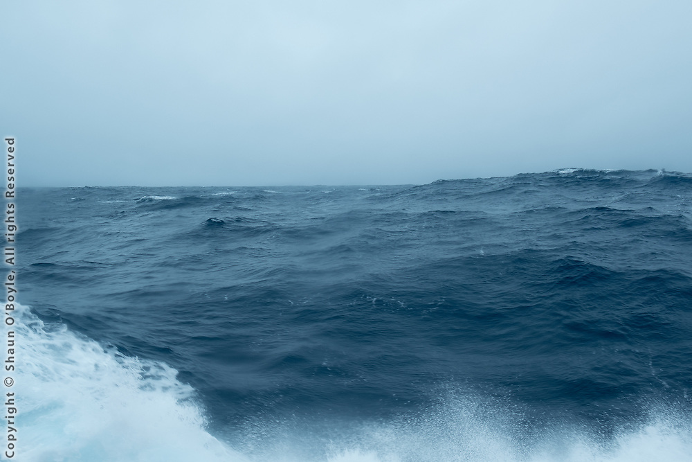 Drake Passage in a less welcoming mood. The ship was rocking 15 degrees side to side and plunging vertically 15-20 feet. A never ending roller coaster ride. Seasick for the first time.