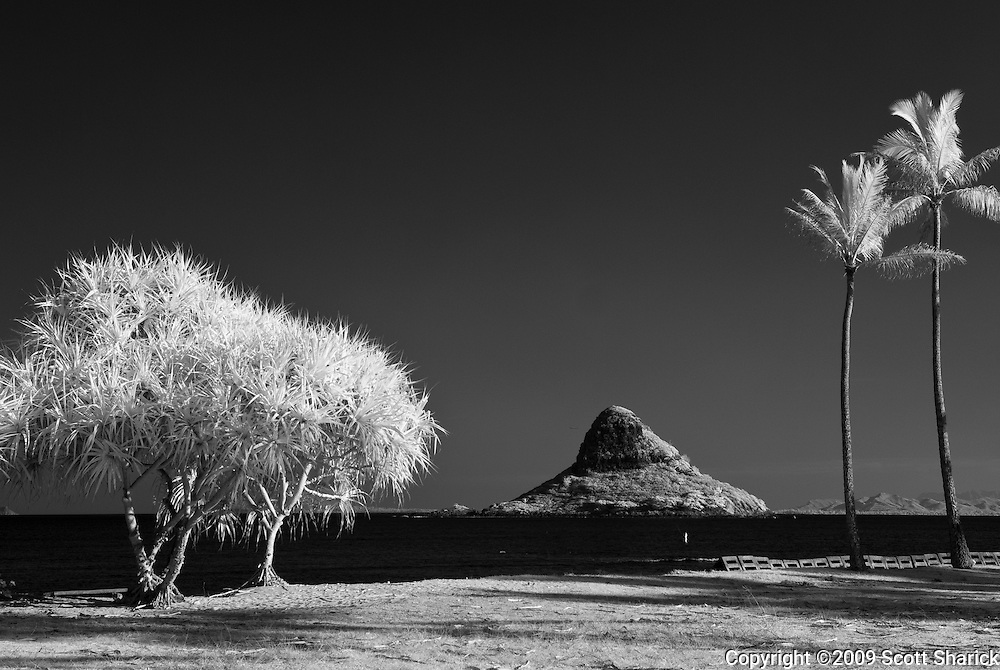 An infrared image showing Chinamna's Hat with tropical trees in the foreground on the island of Oahu in Hawaii.