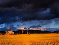 Dramatic stormy light highlights an old barn near Whitefish Montana